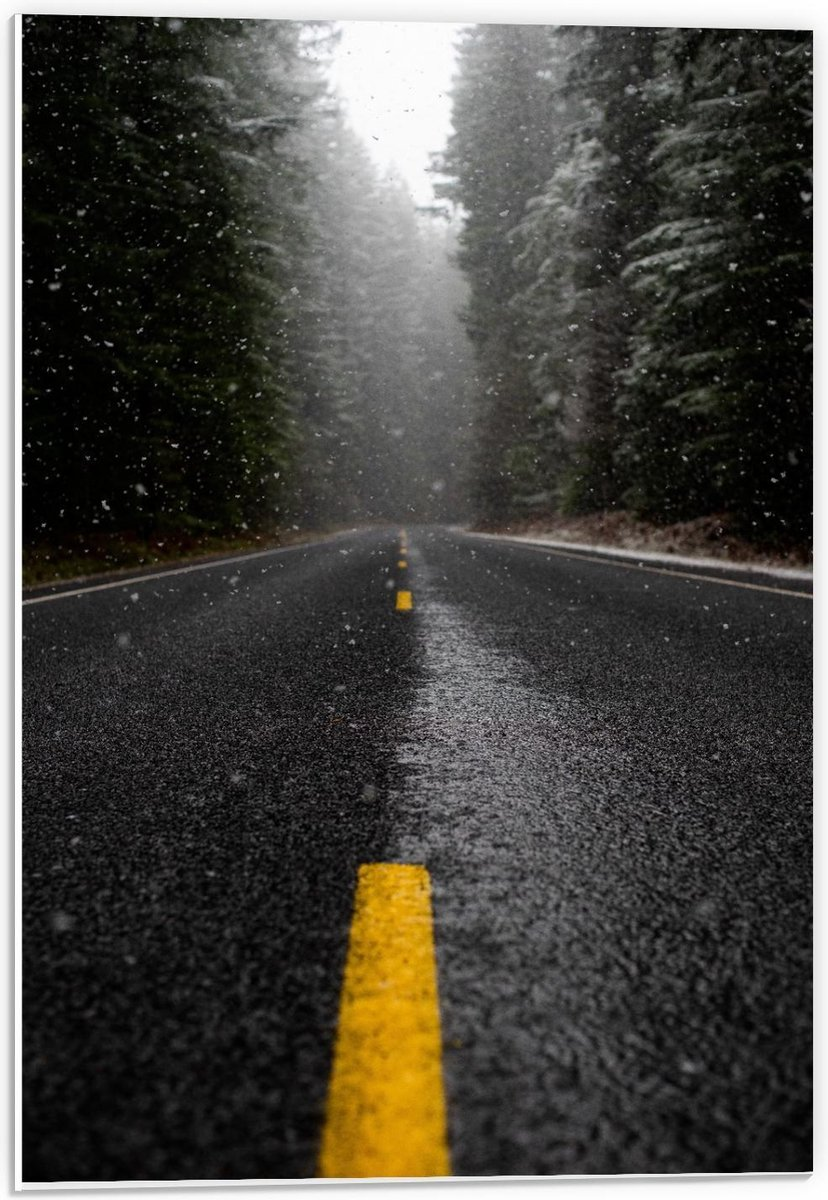 Forex - Opspattende Regen van Nat Wegdek  - 40x60cm Foto op Forex