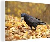 Roek tussen de herfstbladeren Canvas 180x120 cm - Foto print op Canvas schilderij (Wanddecoratie woonkamer / slaapkamer) XXL / Groot formaat!