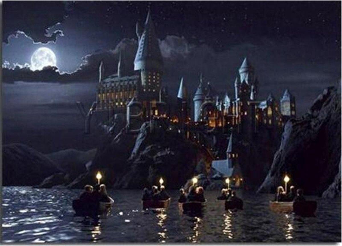 Premium Paintings - Het Grote Meer Harry Potter - Diamond Painting Volwassenen - Pakket Volledig / Pakket Full - 30x40 - Moederdag cadeautje