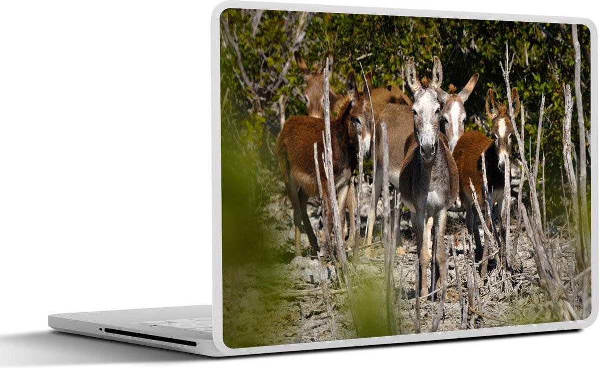 Laptop sticker - 10.1 inch - Een groep wilde ezels loopt door de natuur in het Nationaal park Inagua