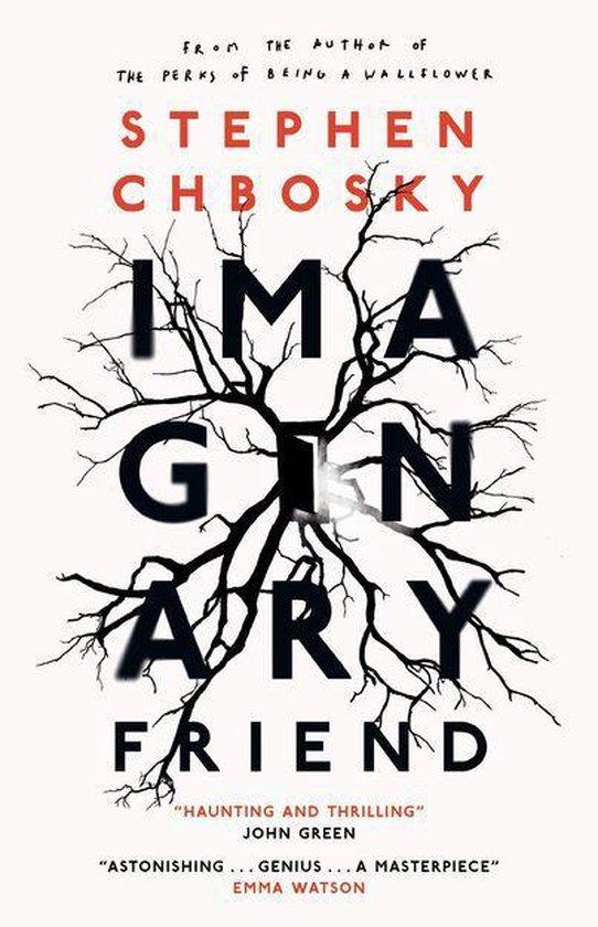Afbeelding van Imaginary Friend