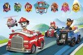 Paw Patrol Vehicles - Poster
