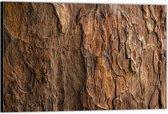 Dibond –Boomschors – 60x40 Foto op Aluminium (Met Ophangsysteem)