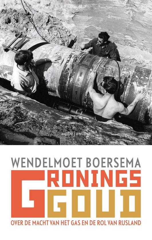 Boek cover Gronings goud van Wendelmoet Boersema (Paperback)