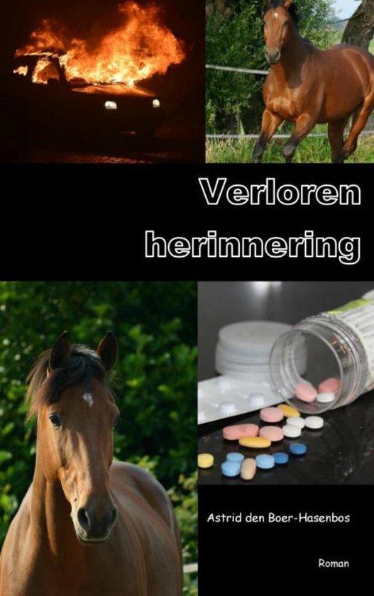 Verloren herinnering - Astrid den Boer-Hasenbos | Fthsonline.com