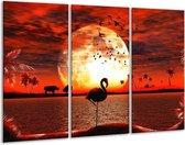 Glasschilderij Dieren | Rood, Wit, Zwart | 120x80cm 3Luik | Foto print op Glas |  F002375
