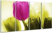Glasschilderij Tulp | Roze, Groen, Wit | 160x80cm 4Luik | Foto print op Glas |  F003722