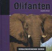 Verbazingwekkende dieren  -   Olifanten