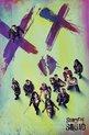 Suicide Squad - Face (Maxi Poster)