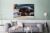 Schattige Rottweiler pup ligt op de vloer Canvas 120x80 cm - Foto print op Canvas schilderij (Wanddecoratie woonkamer / slaapkamer) / Huisdieren Canvas Schilderijen