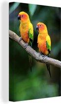 Twee kleurrijke zonparkieten Canvas 90x140 cm - Foto print op Canvas schilderij (Wanddecoratie woonkamer / slaapkamer)