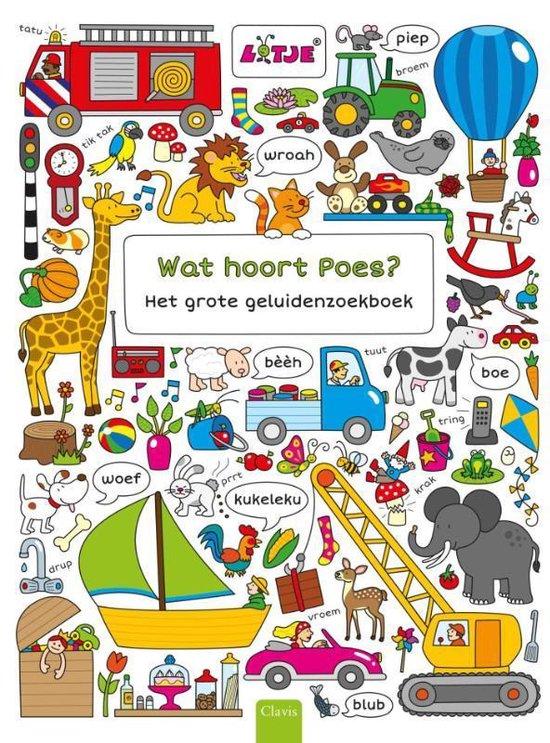 Wat hoort Poes? Het grote geluidenzoekboek - Lotje | Readingchampions.org.uk