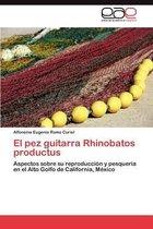 El Pez Guitarra Rhinobatos Productus
