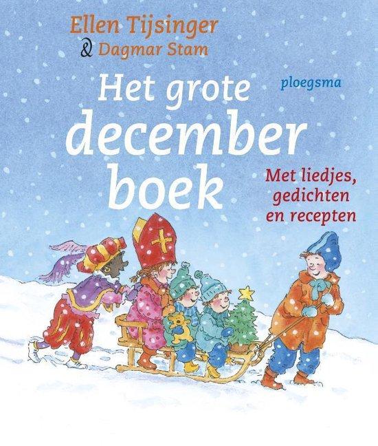 Boek cover Tijsinger * Het grote decemberboek van Ellen Tijsinger (Paperback)