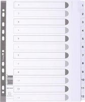 25x Bedrukte tabbladen karton 160g - geplastificeerde tabs - 12 tabs - 1 tot 12 - A4 maxi, Wit