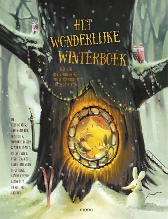 Boek cover Het wonderlijke winterboek van Marianne Busser (Hardcover)