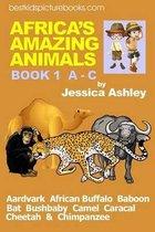 Africa's Amazing Animals