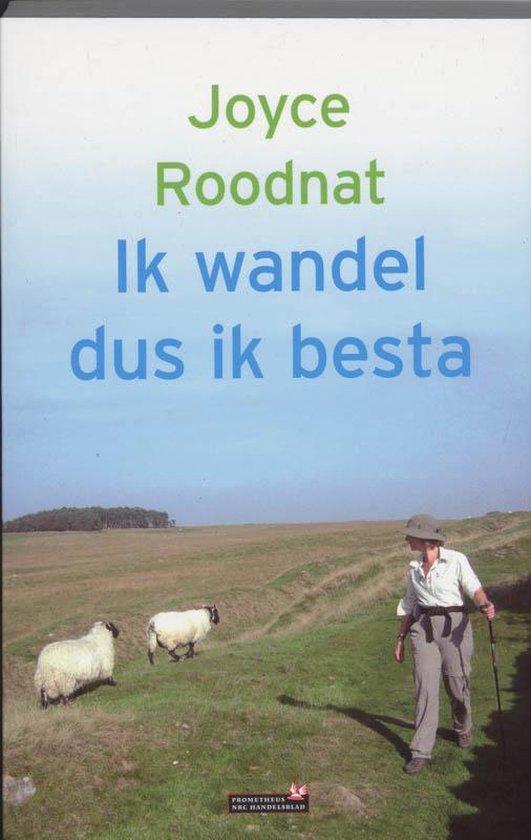 Ik wandel dus ik besta - Joyce Roodnat |