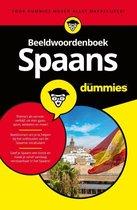 Voor Dummies  -   Beeldwoordenboek Spaans voor dummies
