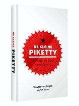 De kleine Piketty