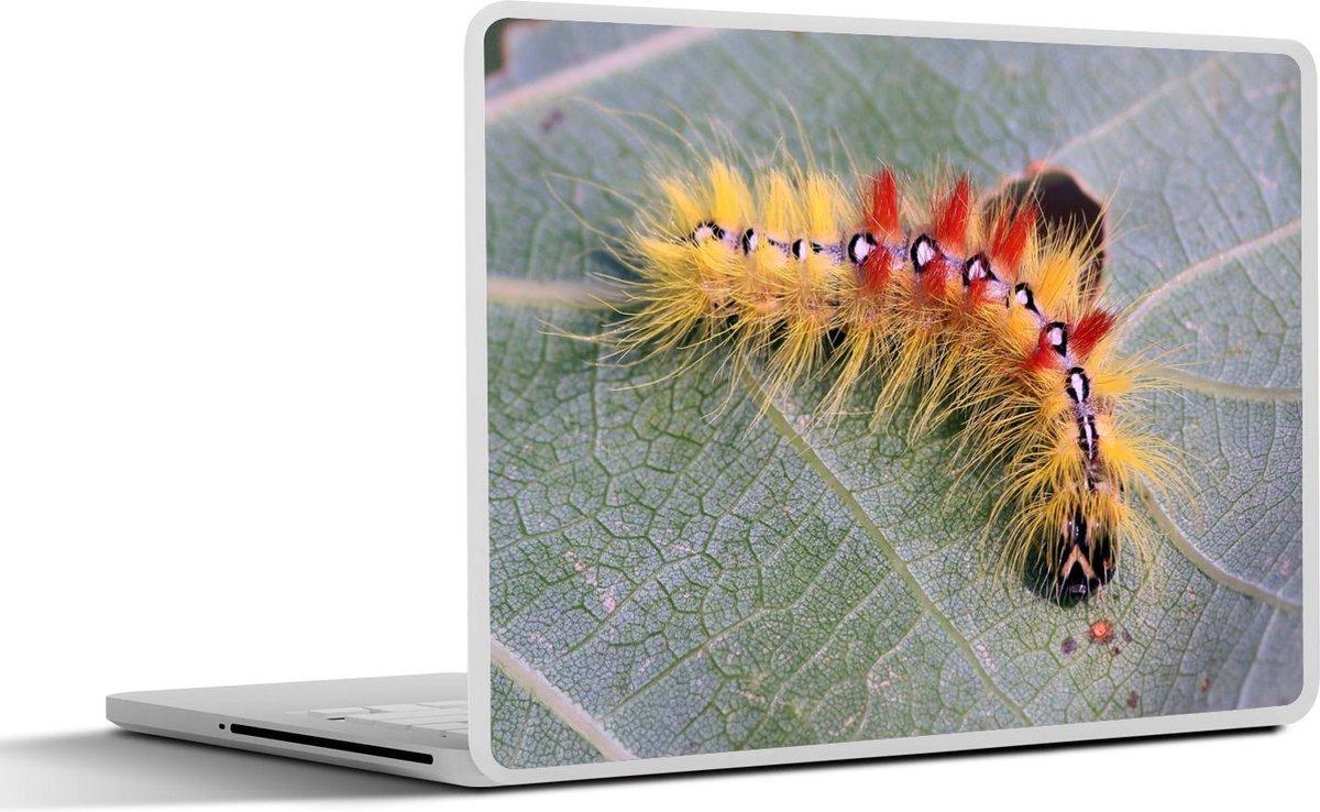 Laptop sticker - 10.1 inch - Een harige rups op een blad