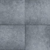 Bol.com-Minimaal 10 stuks afnemen Minimaal 10! Ceramica Lastra Seastone Gray-aanbieding