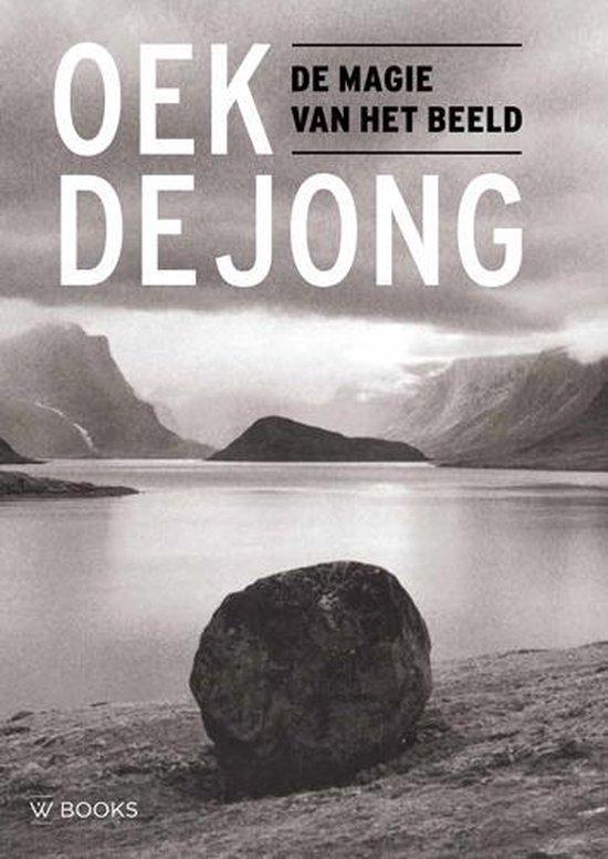 Boek cover De magie van het beeld van Oek de Jong (Paperback)
