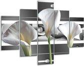 Glasschilderij Bloem | Grijs, Wit, Groen | 100x70cm 5Luik | Foto print op Glas |  F004687