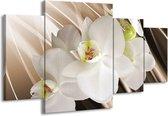 Canvas schilderij Orchidee | Wit, Bruin | 160x90cm 4Luik
