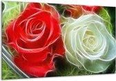 Glasschilderij Roos | Wit, Rood, | 120x70cm 1Luik | Foto print op Glas |  F001581