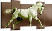 Canvas schilderij Paard | Bruin, Groen | 120x65 5Luik