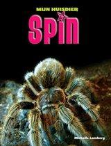 Mijn Huisdier - Spin