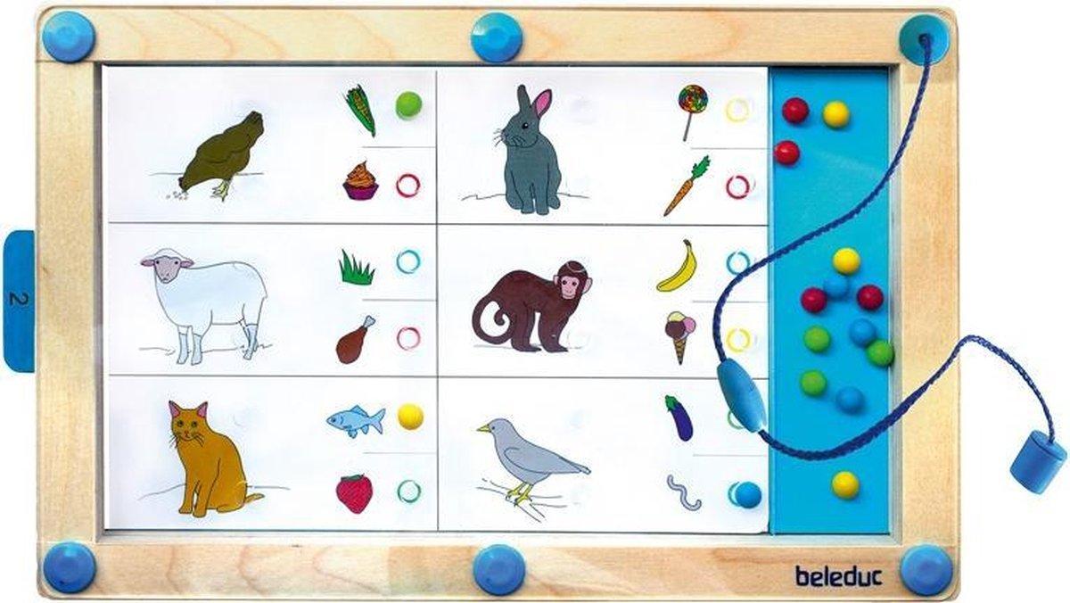 Beleduc Magneetspel Logiplay 19-delig