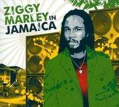 Ziggy Marley In Jamaica