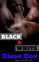 Black And White: 3 Gay Interracial Erotic Short Stories