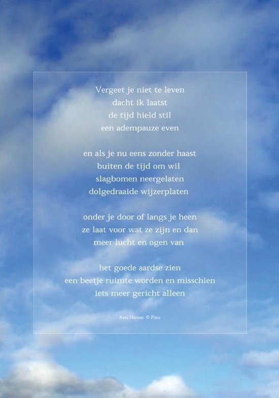 Raamgedicht Plint Hermis 'Vergeet je niet te leven' incl. set zuignapjes 2001/01C1 - Kees Hermis   Readingchampions.org.uk