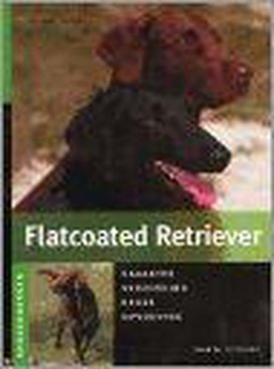 Flatcoated Retriever - Yvonne Jaussi |