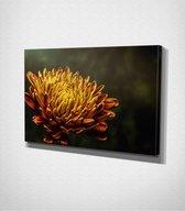 Yellow Flower Canvas   30x40 cm