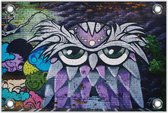 Tuinposter –Muurschildering van een Uil– 120x80 Foto op Tuinposter (wanddecoratie voor buiten en binnen)