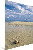 Een kroonslak op een prachtig wit strand in Nationaal park Lucayan Canvas 90x140 cm - Foto print op Canvas schilderij (Wanddecoratie woonkamer / slaapkamer)