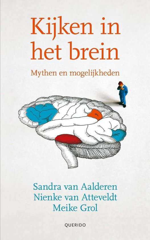 Kijken in het brein - Sandra van Aalderen |