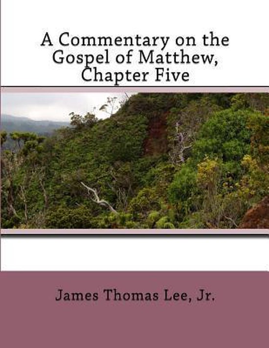 Boek cover A Commentary on the Gospel of Matthew, Chapter Five van Mr James Thomas Lee Jr (Paperback)