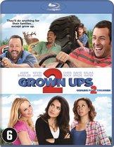 Grown Ups 2 (Blu-ray)