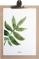 Fabrikten Botanisch Ash Print – A4 – Groen