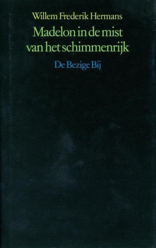 Madelon in de mist van het schimmenrijk - Willem Frederik Hermans pdf epub