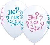 Geboorte geslacht ballonnen 25 stuks - babyshower versiering
