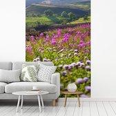 Wilde bloemen op de heide in het Nationaal park Northumberland in Engeland fotobehang vinyl 215x320 cm - Foto print op behang