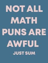 Not All Math Puns Are Awful Just Sum