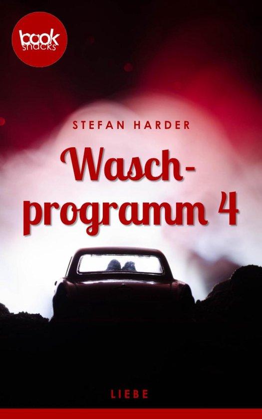 Omslag van Waschprogramm 4 (Kurzgeschichte, Liebesroman)