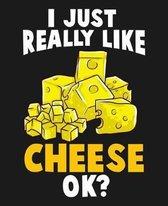 I Just Really Like Cheese Ok?